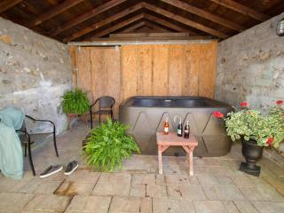 In Hot Springs~Hot Tub~On AT~Walk To Town~Romantic - Hot Springs vacation rentals