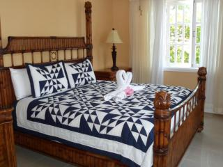 Tranquility  Cove - Savanna La Mar vacation rentals