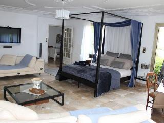 luxury 2 br 1300 sqft appartment with huge terrace and garden in center Montpellier - Montpellier vacation rentals