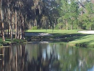 Tampa Busch Gardens Saddlebrook 3 room SPA & Golf Villa (6 pers) - Wesley Chapel vacation rentals