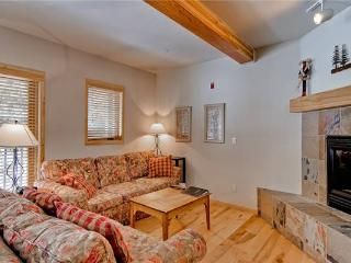 Twin Elk Lodge #A1 - Breckenridge vacation rentals