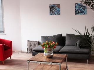 Marvelous Midtown Apartment - Rotterdam vacation rentals