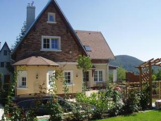 Family Cottage combines comfort, saltwater pool, barbecue - Nitra vacation rentals