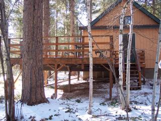 Black hill stuck away cabin - Black Hills and Badlands vacation rentals