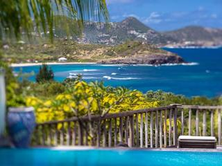 Lovely villa nestled in the hillside of Camaruche, St Barts WV VKA - Camaruche vacation rentals