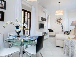 Puente y Pellón II Apartment, new, modern and elegant - Seville vacation rentals