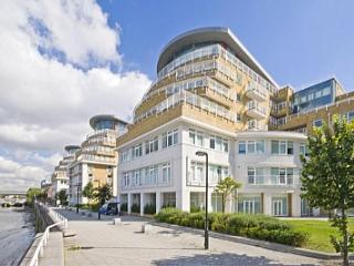 2BR / 2BA - Amazing Luxury Apartment with River Views - Battersea - London vacation rentals