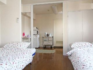 Lovely Flat 3 min walk to JR Harajuku station - Shibuya vacation rentals