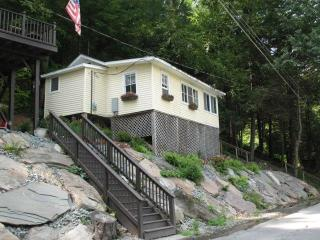 COZY COTTAGE LOCATED ON DELAWARE RIVER - Damascus vacation rentals