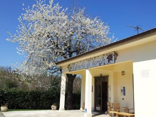 Beautiful and confortable cottage in the country! - Chieti vacation rentals