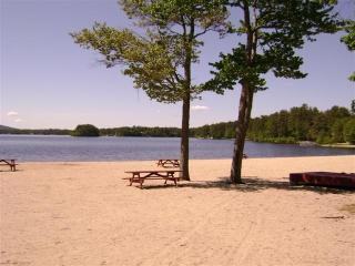 Year-round rental near lake and skiing! - Lakes Region vacation rentals