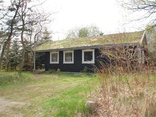 Holiday house for 6 persons in Central Jutland - Give vacation rentals