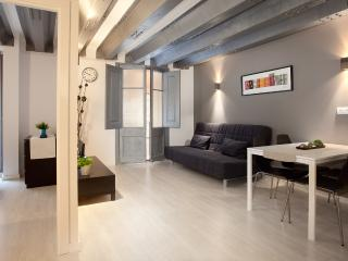 Ramblas Unio - spacious and fully renovated - Barcelona vacation rentals