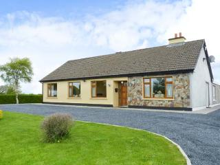 MOUNTAIN VIEW, romantic retreat, open fire, lovely views, near Rossadrehid and Tipperary, Ref: 25796 - Tipperary vacation rentals