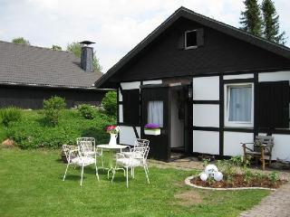 Vacation Home in Winterberg - 915 sqft, country, charming, quiet (# 3963) - North Rhine-Westphalia vacation rentals