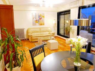 Luxury 2 bedrooms 2 bath condo, Amazing View - Buenos Aires vacation rentals