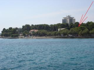 Apartment PUNTA center- 50m beach 2+2,50m2 - Vodice vacation rentals
