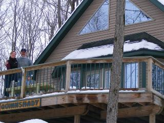 New Cottage w/Lake Access to Rose Lake - LeRoy vacation rentals