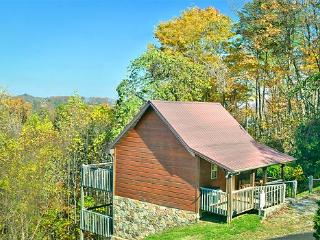 Little Bearadise - Pigeon Forge vacation rentals