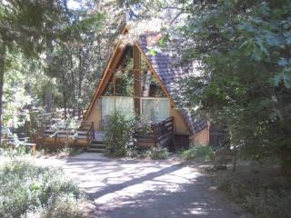 Ryders` Family Retreat - Idyllwild vacation rentals