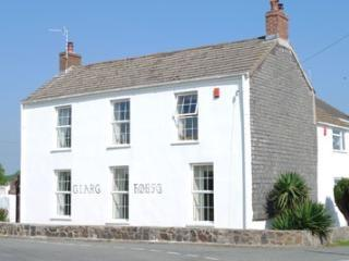 Clare House - Clare House -Pembrokeshire - Narberth - rentals