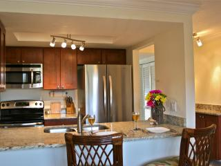 Westwinds Luxury Water Front Condo, Beach,Pool, Sun and Sand - Treasure Island vacation rentals
