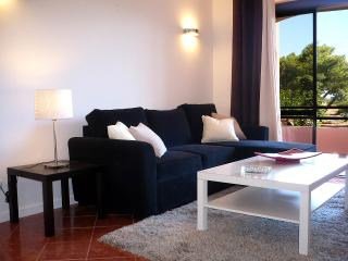 Gandarinha Lovely apartment near the sea Cascais - Cascais vacation rentals