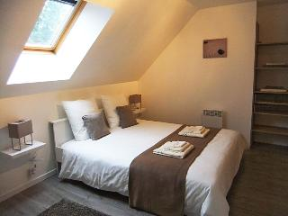 Modern & Comfortable house in hearth of Brittany - Ploerdut vacation rentals