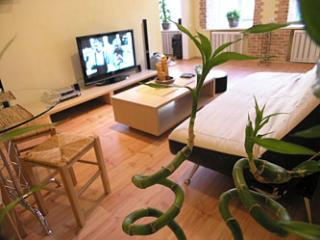 Bamboo - Two room apartment on Independence square - Kiev vacation rentals