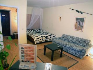 Zebra one room apartment on Khreschatik - Kiev vacation rentals