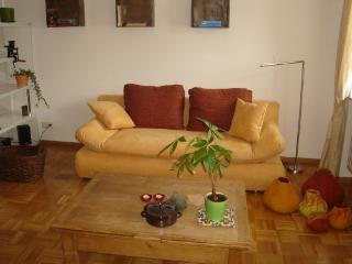 LLAG Luxury Vacation Apartment in Saarbrücken - natural, beautiful, comfortable (# 3971) - Saarland vacation rentals