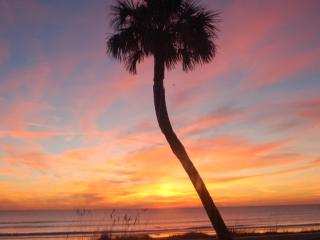 $100 off in SEPT  / Full VIEW/ Ocean Front Condo/  1st Flr/   Small  Quiet,Complex - Cocoa Beach vacation rentals