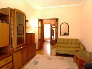 Great Value 2 Bedroom Apt in the Heart of Kiev - Kiev vacation rentals