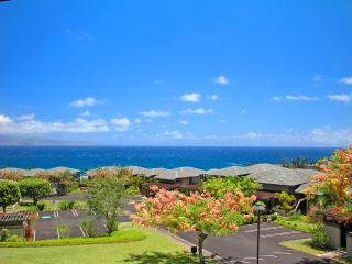 Ocean views, 7th Night FREE! - Kapalua vacation rentals