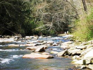 Cottage On River With Huge Backyard & Fire Pit - Lake Lure vacation rentals