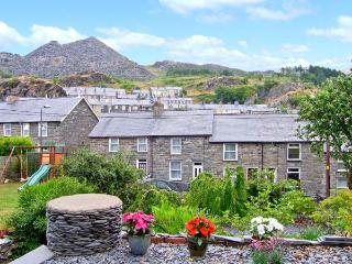 BRYN MEIRION great touring base, open plan, Ref 21899 - Snowdonia National Park Area vacation rentals