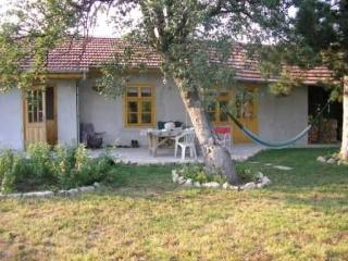 Pear Tree Studio. Peaceful Low Cost Rural Bulgaria - Veliko Tarnovo vacation rentals