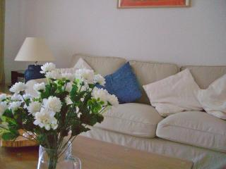 Lovely house in Bel Air residential area, Estepona - Estepona vacation rentals