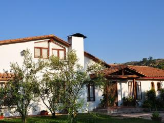 B&B Bellavista de Colchagua, Chile - Santa Cruz vacation rentals