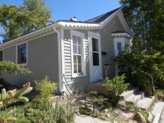 Charming home with views of Mount Massive - South Central Colorado vacation rentals