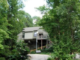 Eagles Hut - Helen vacation rentals
