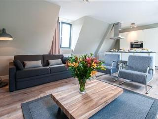 Van Gogh Leidseplein K - Holland (Netherlands) vacation rentals