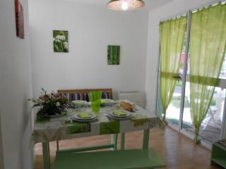 House With Garden, Near Lake Lacanau Maubuisson, And Beautifull Ocean Beach - Hourtin-Plage vacation rentals