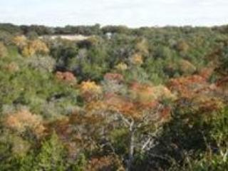 A Lazy S Place TX Hill Country Dog Friendly House - Comfort vacation rentals