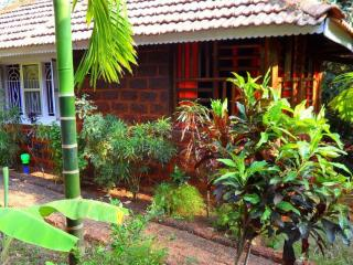 Cottage London 4 along Coconut & Banana Tree's - Karnataka vacation rentals
