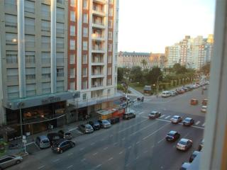 2 bedroom steps away from Plaza Colon, recycling. - Mar del Plata vacation rentals