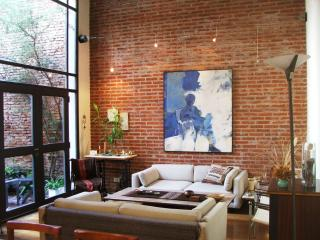 Spectacular Triplex with terrace in Palermo Viejo - Buenos Aires vacation rentals