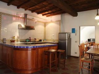 Rome historical center - Seggiano vacation rentals