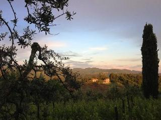 Experience the Authentic Farmhouse La Veduta di Vertine on 4 Acres of Olive Groves - Chianti vacation rentals