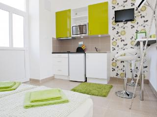 CR112bBUD - Panorama Studio Apartment - Budapest & Central Danube Region vacation rentals